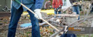 разботници разчистват двор